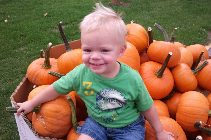 neufeld-farms-pumpkinkid