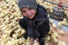 Eliah-and-Baby-chicks-768x1024