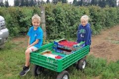 fun-on-the-farm
